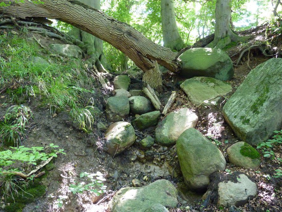 Wenn Naturgewalten walten