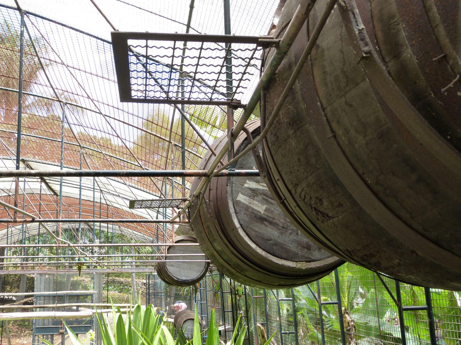 Alte Weinfässer als Heim für Papageien