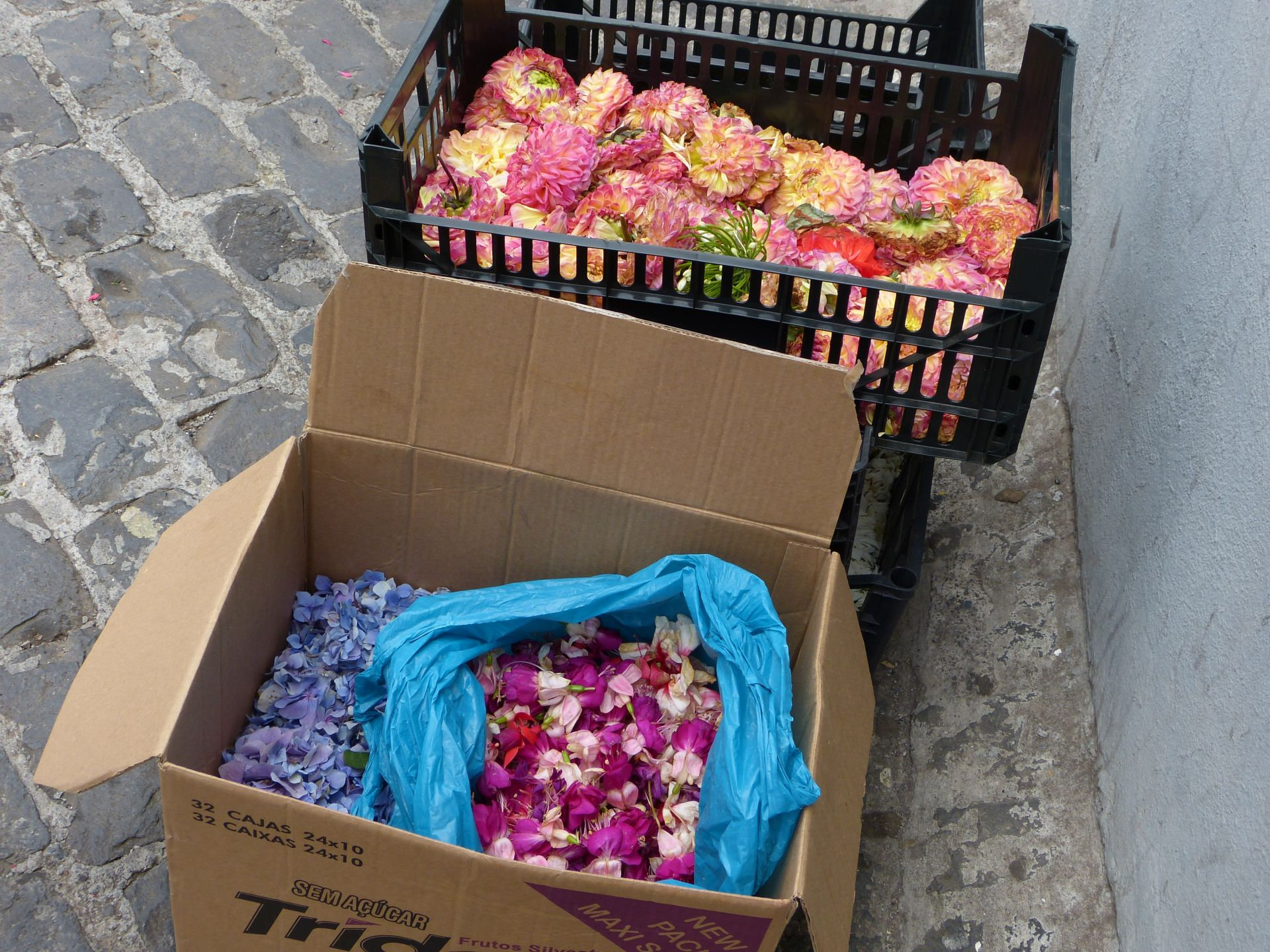 Kartonweise Blüten!