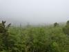Der Encumeada Pass steht voll im Nebel