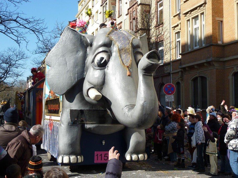 Dumbo darf auch mit!