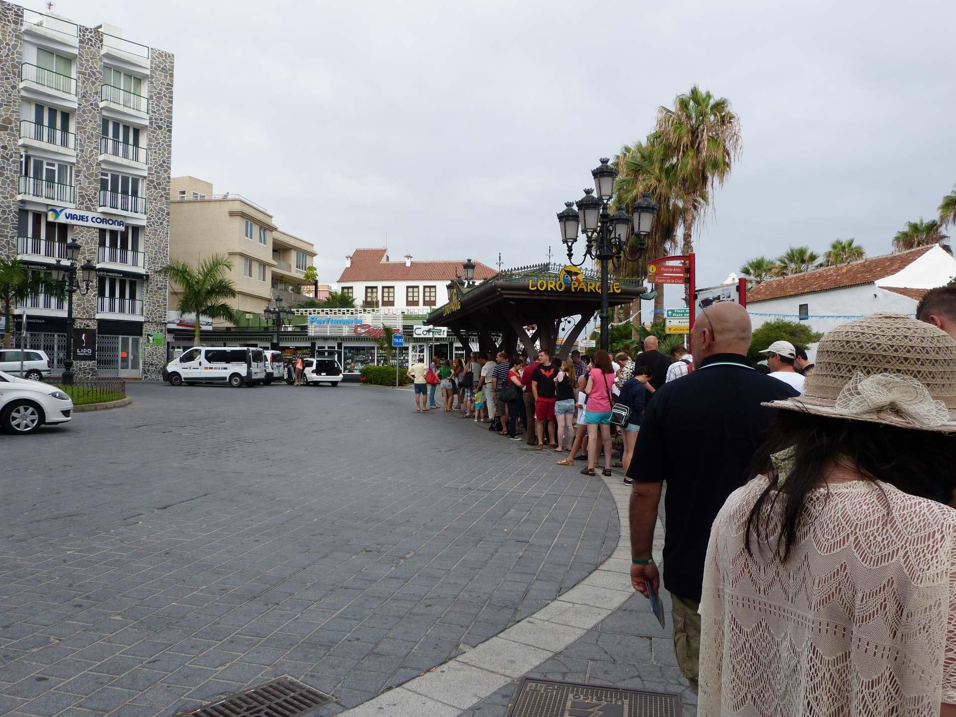 Warten auf den Loro Parque Express