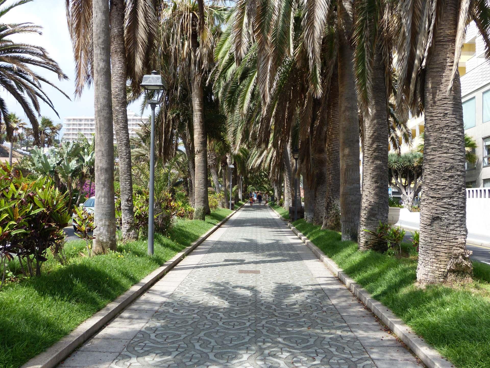 Avenida Aguilar y Quesada