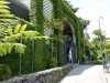 Der botanische Garten  Jardin Botanico