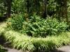 Eindrücke vom Jardin Botanico