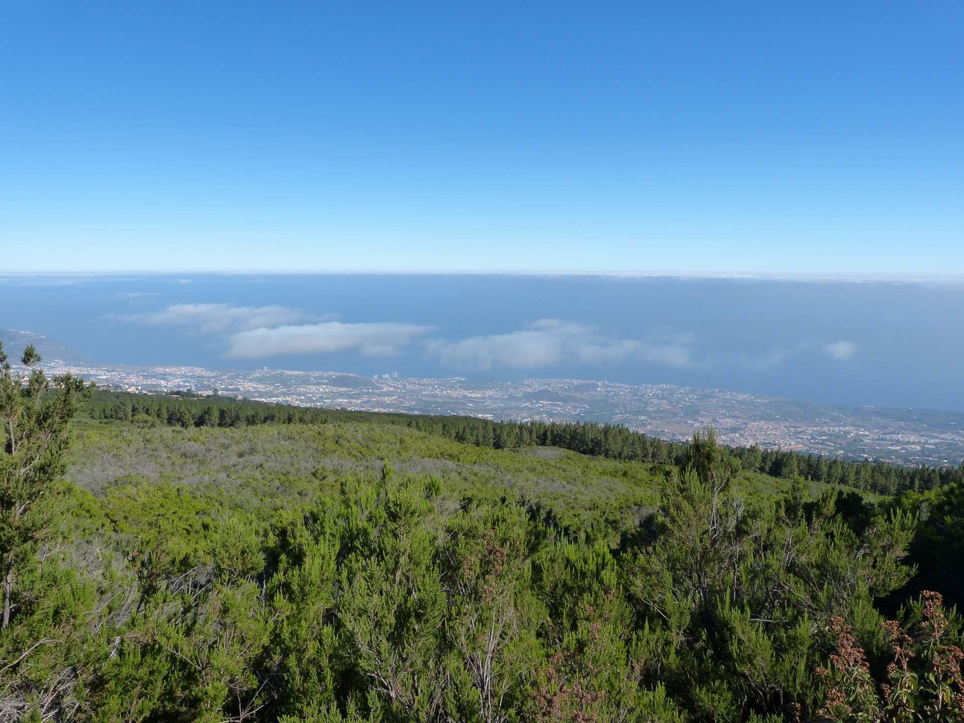 Blick über das Orotava Tal nach Puerto de la Cruz